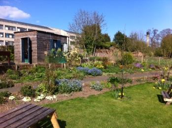 garden april