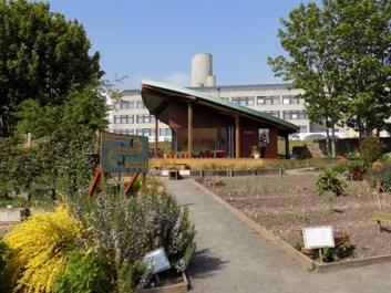 leaf room and ninewells hospital_450x338